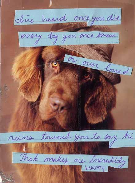 dog post.jpg