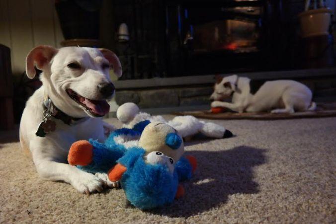 tubby toy happy