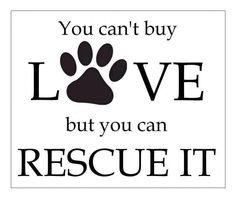 love rescue.jpg