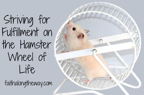 hamster wheel of life.jpg