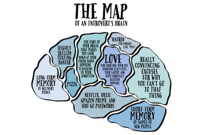map of brain.jpg