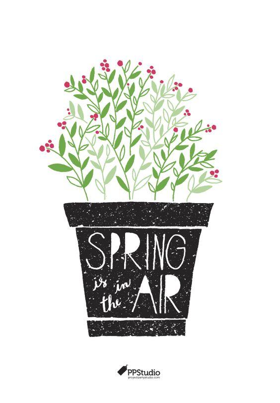 spring in the air.jpg