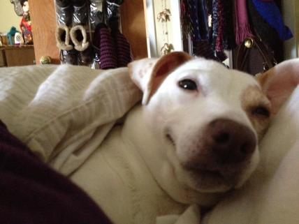 tubby-sleeping