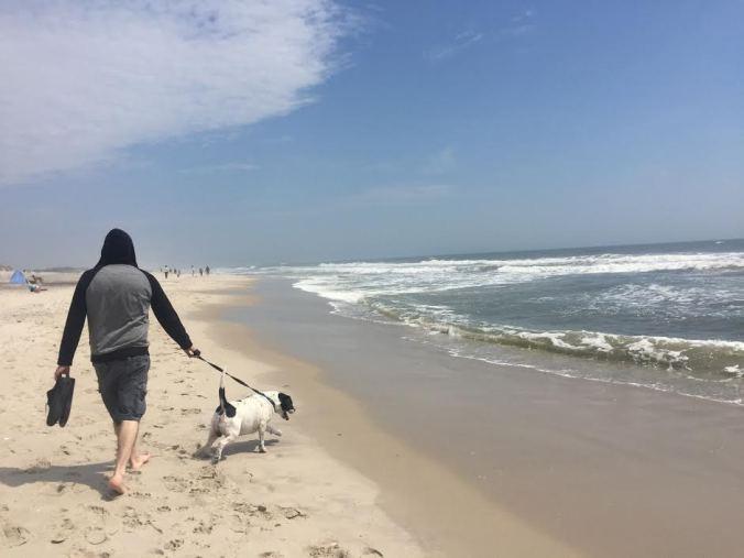 renny beach 2.jpg