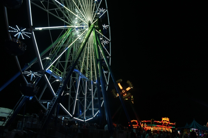 awesome ferris wheel.JPG