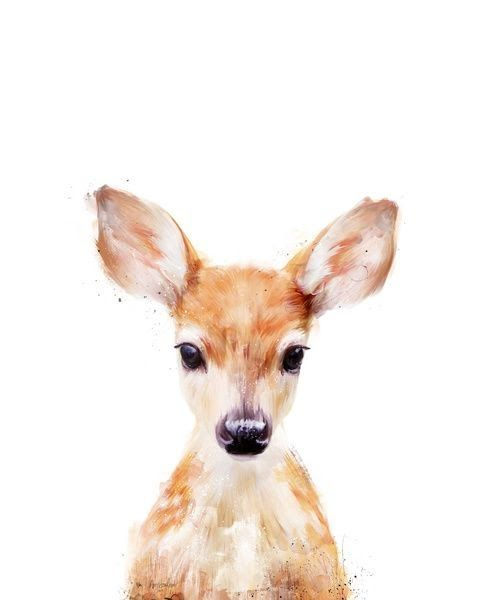 little deer.jpg