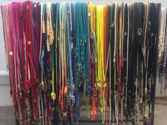 found leashes