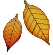 leaf emoji.jpg