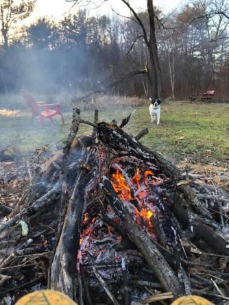 renny fire